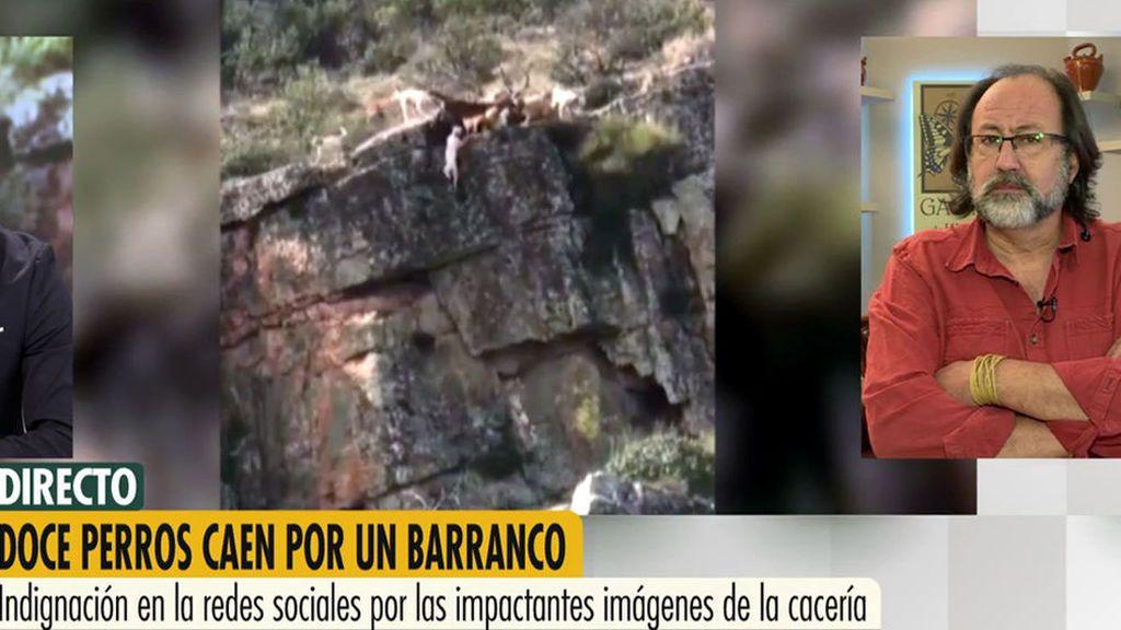 Luis Miguel Domínguez distribuyó el vídeo de los perros cayendo por un barranco