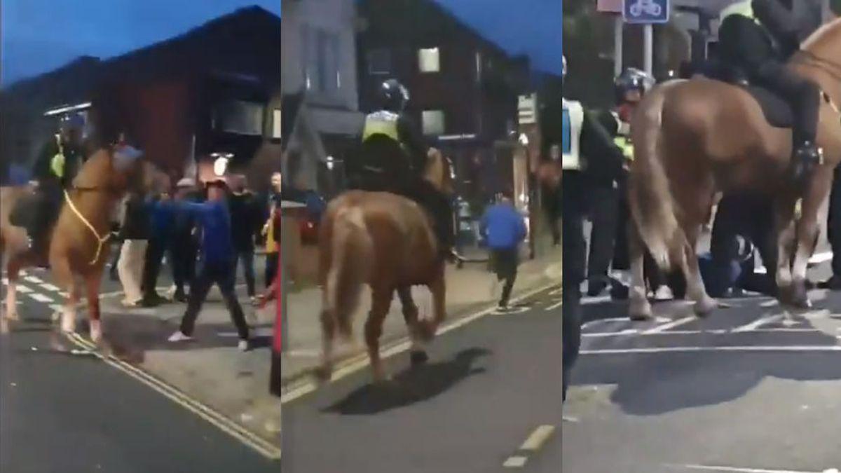 Un hooligan inglés se lía a puñetazos con un caballo de la policía antes de ser detenido