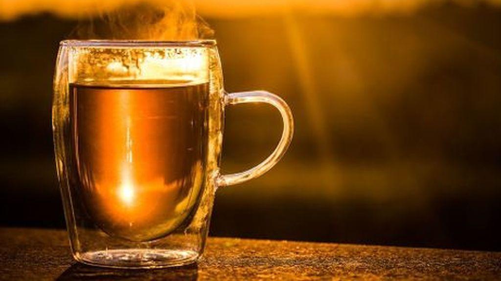 Científicos hallan contaminación plástica en las bolsitas de té