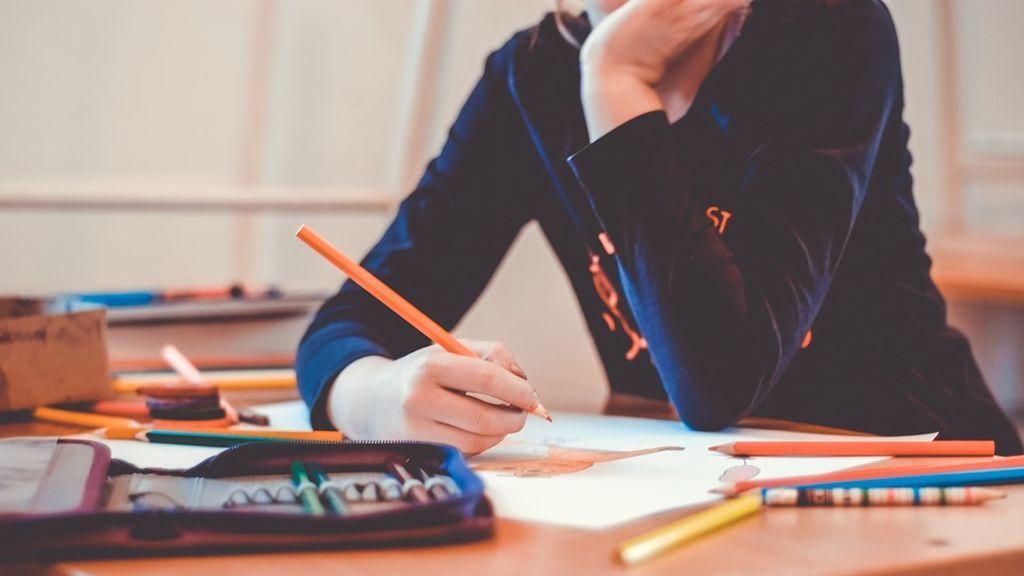 Down España ha alertado de que las quejas de padres han aumentado por la falta de apoyos educativos específicos a sus hijos con síndrome de Down