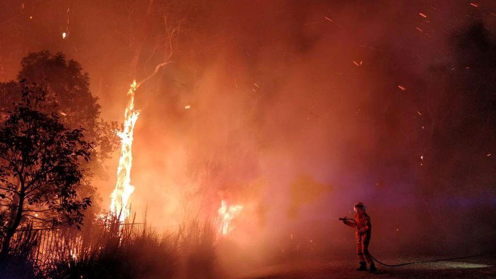 Un gel antincendios forestales, la esperanzadora solución de los científicos para combatir el fuego