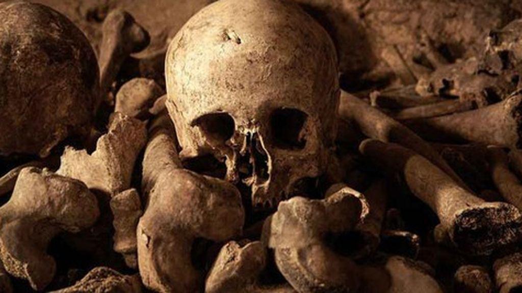 Sitúan el origen de la Peste Negra en la región rusa del Volga