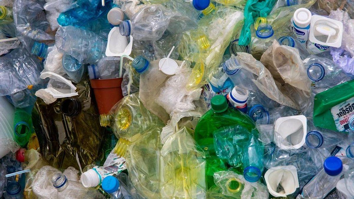 Comemos plástico, orinamos plástico: los riesgos de la dieta plastificada
