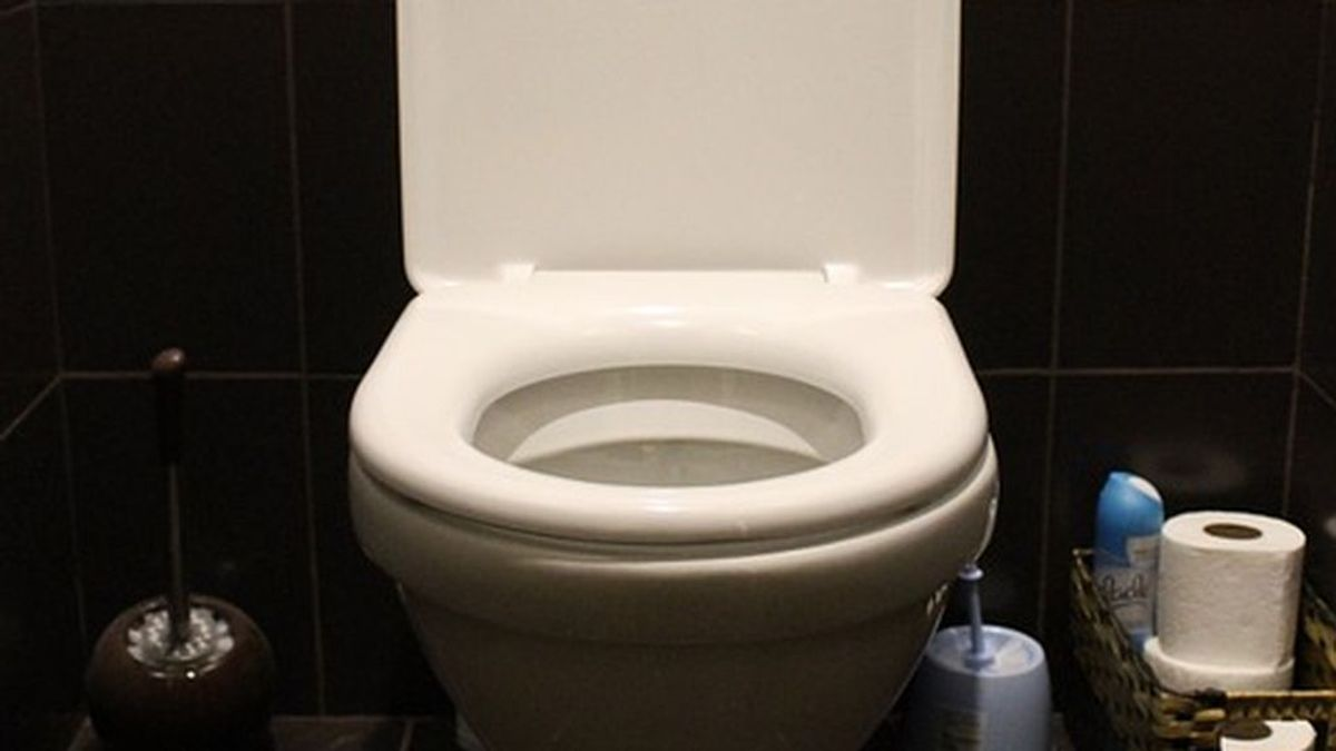 10 cosas que jamás deberías tirar por el inodoro