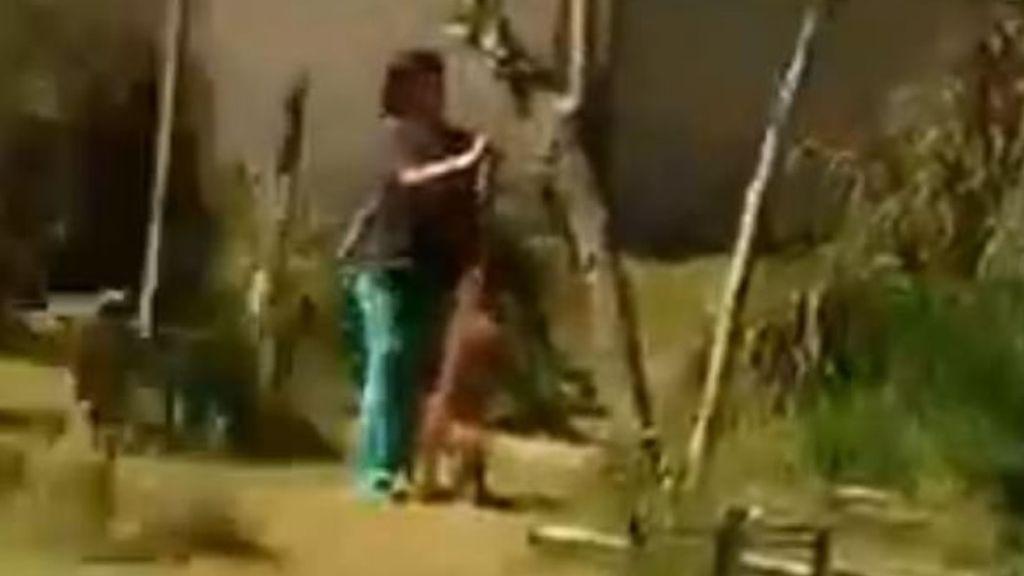 Una niña de 10 años graba el momento en el que una mujer apuñala y ahorca al perro de un vecino