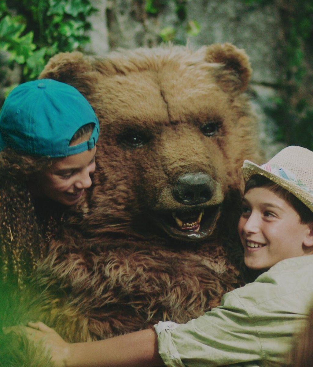 oso (2)