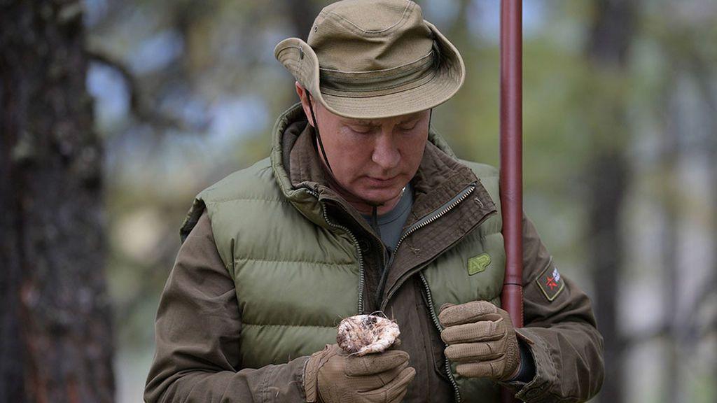Putin recogiendo setas