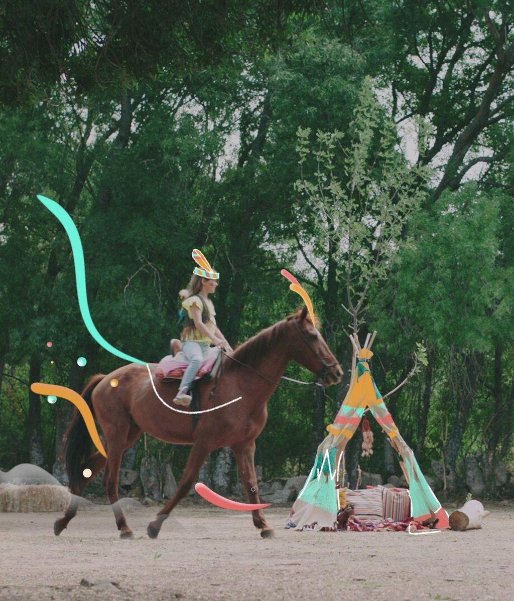 caballo (2)