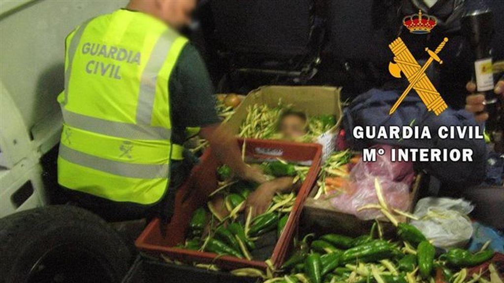 Auxilian a una persona que viajaba oculta en cajas de hortalizas en Almería