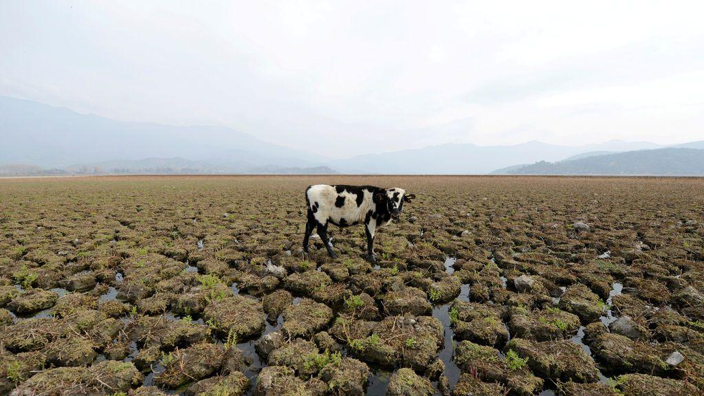 Cuarto año hidrológico más seco del siglo: la sequía que arrastramos empezó en invierno