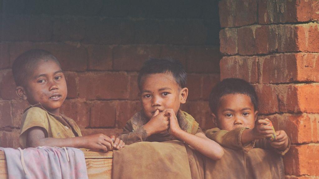 El salvado de arroz: la posible solución para ayudar a frenar la desnutrición en países subedarrollados