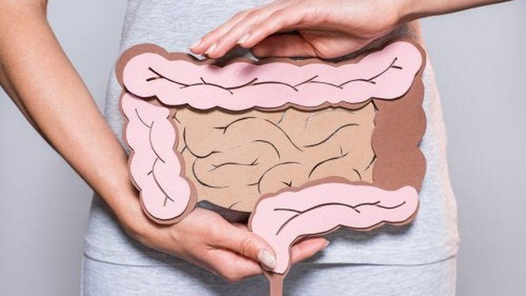 mujer-microbiota-intestinal-500x334