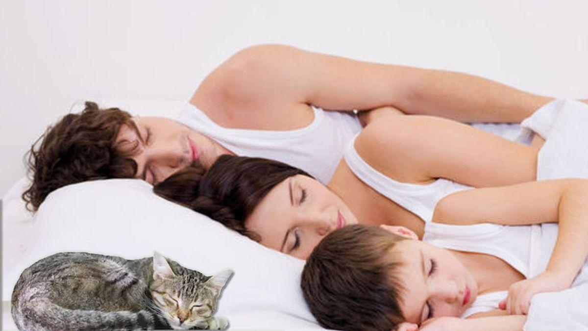 """Dormir no es perder el tiempo,  ni  de vagos:  """"El sueño es el mayor esfuerzo de la madre naturaleza contra la muerte"""""""