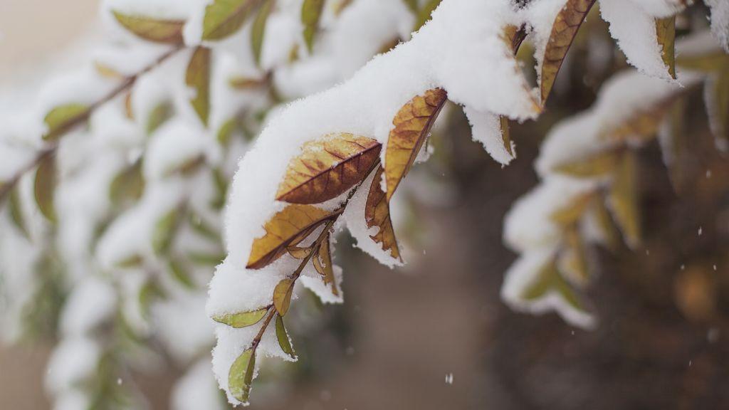 Los efectos de la masa polar: primeras nevadas destacadas el domingo