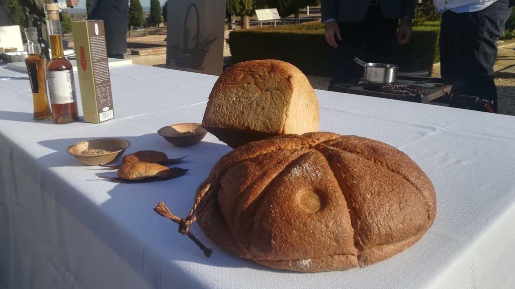 italica pan
