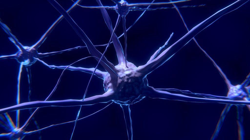 Dormir adecuadamente podría evitar enfermedades degenerativas como el Alzheimer y el Parkinson