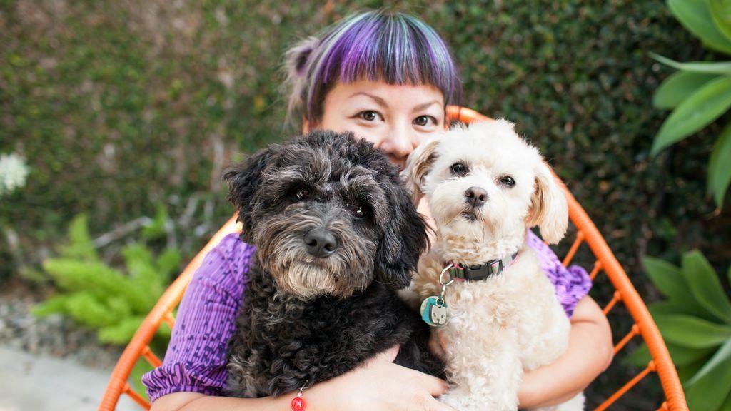 Cobrar por cuidar perros