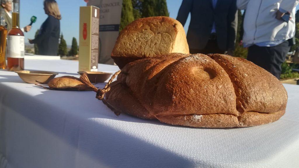 Científicos desgranan el menú de los romanos en Hispania: entrantes, carne y mucho vinagre