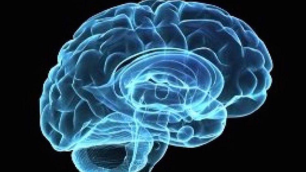Descubren cómo el cerebro sube el volumen para escuchar a alguien en una multitud