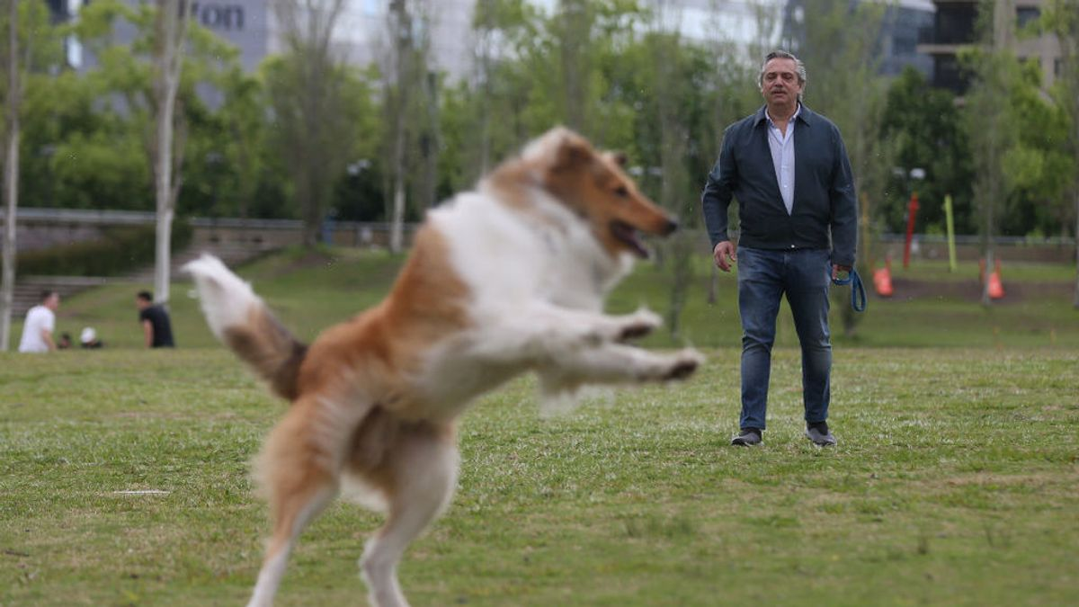 Un hijo drag queen y un perro 'instagramer': los pilares del nuevo presidente argentino Alberto Fernández
