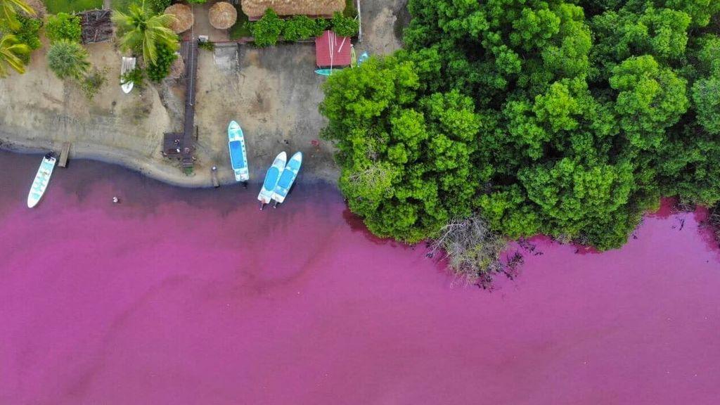 Una fuerte tormenta vuelve rosa una laguna en México