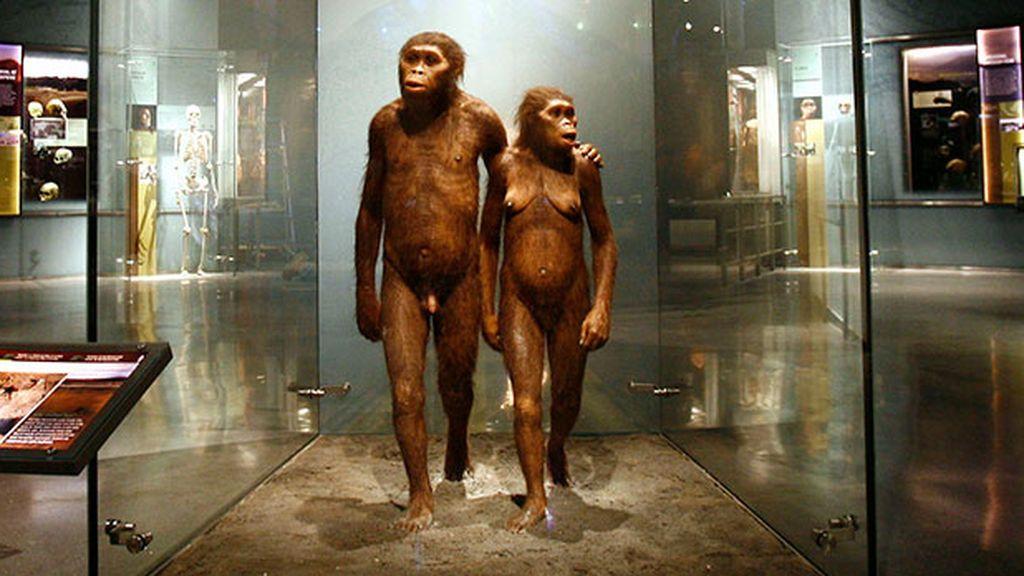 Una investigación ubica por primera vez la zona del sur de África donde surgió el homo sapiens sapiens