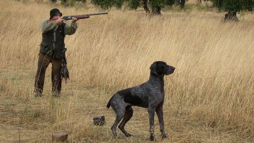 A favor o en contra: Andalucía propone promocionar la caza en los colegios