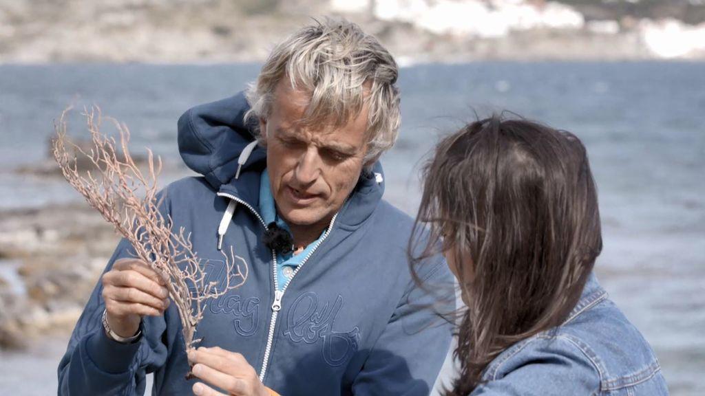 La restauración de las gorgonias con Jesús Calleja