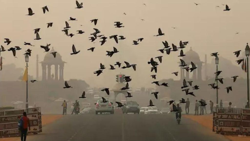 Nueva Delhi declara la emergencia de Salud por contaminación: se suspenden las clases hasta el día 5