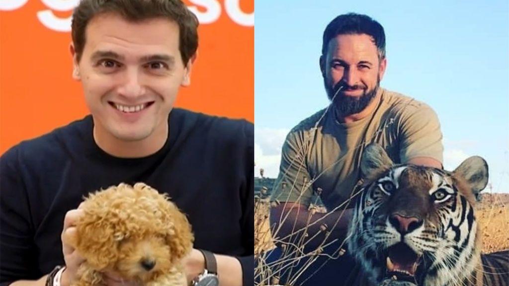 """El perro de Ciudadanos se enfrenta al tigre de Vox: """"No me da miedo vuestro lindo gatito"""""""