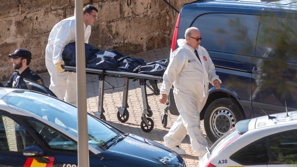 Fallece una mujer al caerle una palmera en Mallorca