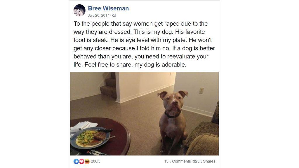 foto perro violación