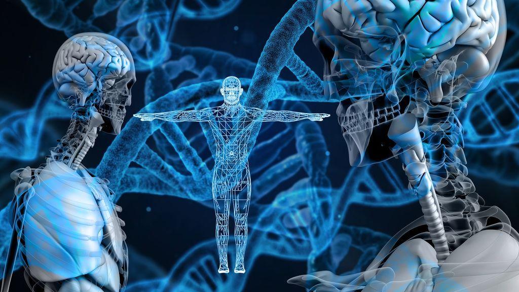 Bioética ante las preguntas del futuro: ¿seremos inmortales, diseñaremos a nuestros hijos?