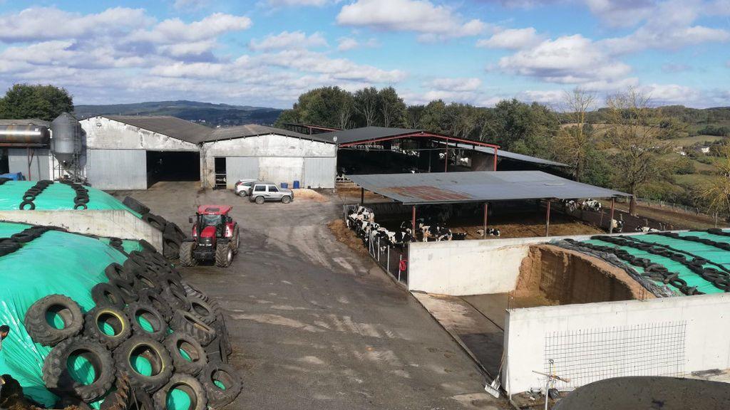 Manuel, en su explotación de Portomarín (Lugo), tiene unas 400 vacas