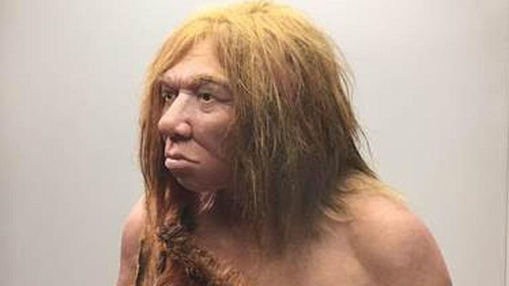 Posibles causas de la extinción de los neandertales: las enfermedades humanas