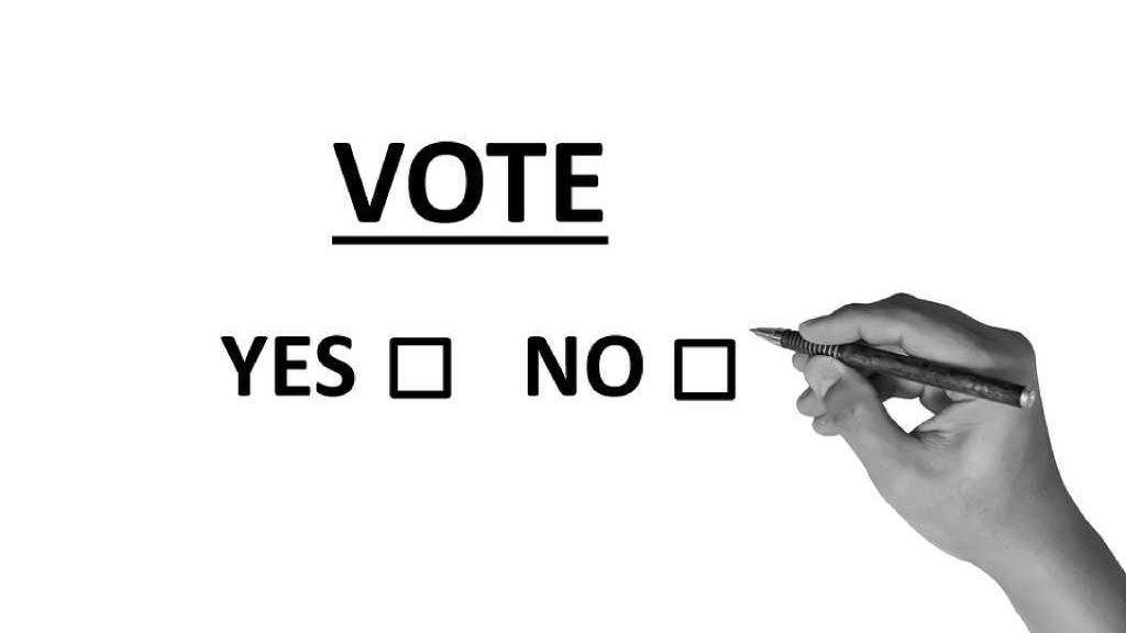 ¿Cómo funciona el cerebro de los votantes?