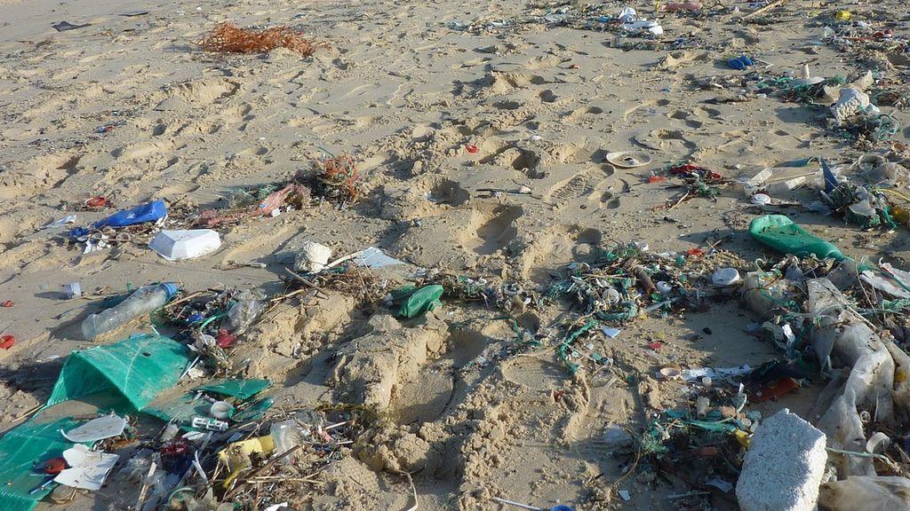 El plástico contamina hasta el refugio de aves marinas del Pacífico, poniendo en peligro la vida de los animales