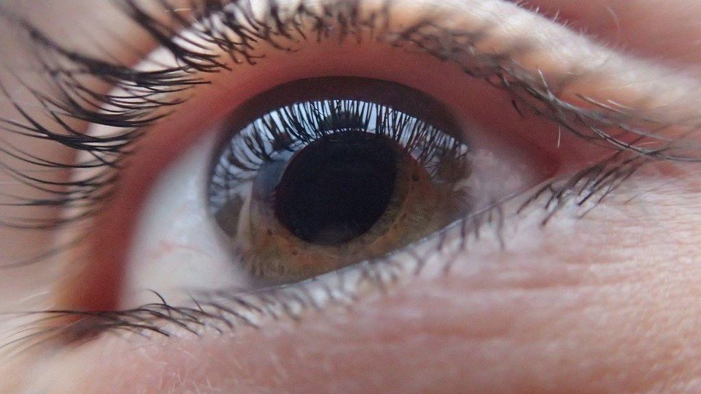 Los pacientes con diabetes que van al oftalmólogo, ya presentan pérdida de visión