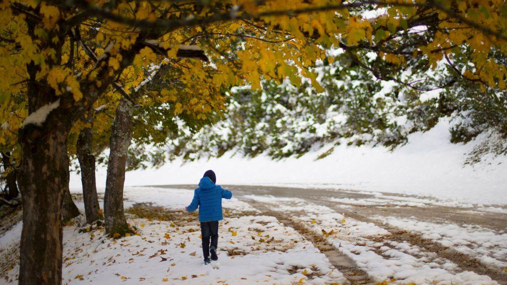 Aviso especial de la Aemet: nevadas en la Meseta a 700 metros