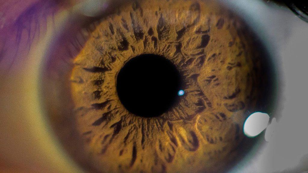 La diabetes ocular: el riesgo de una enfermedad asintomática