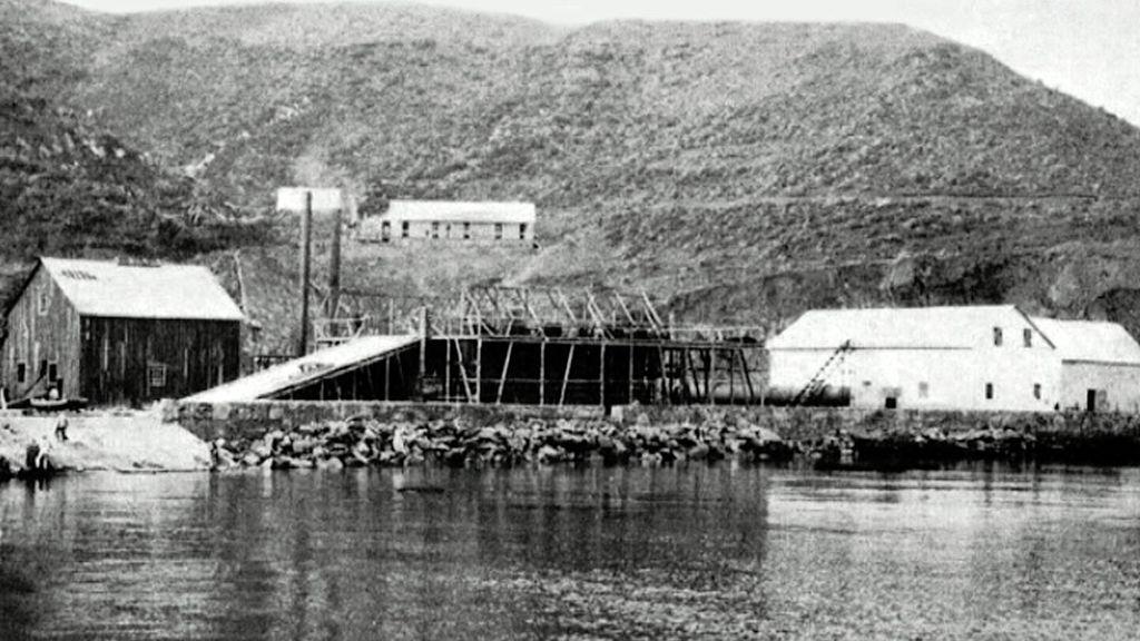Primera factoría ballenera establecida en la ensenada de Getares. En torno al año 1923