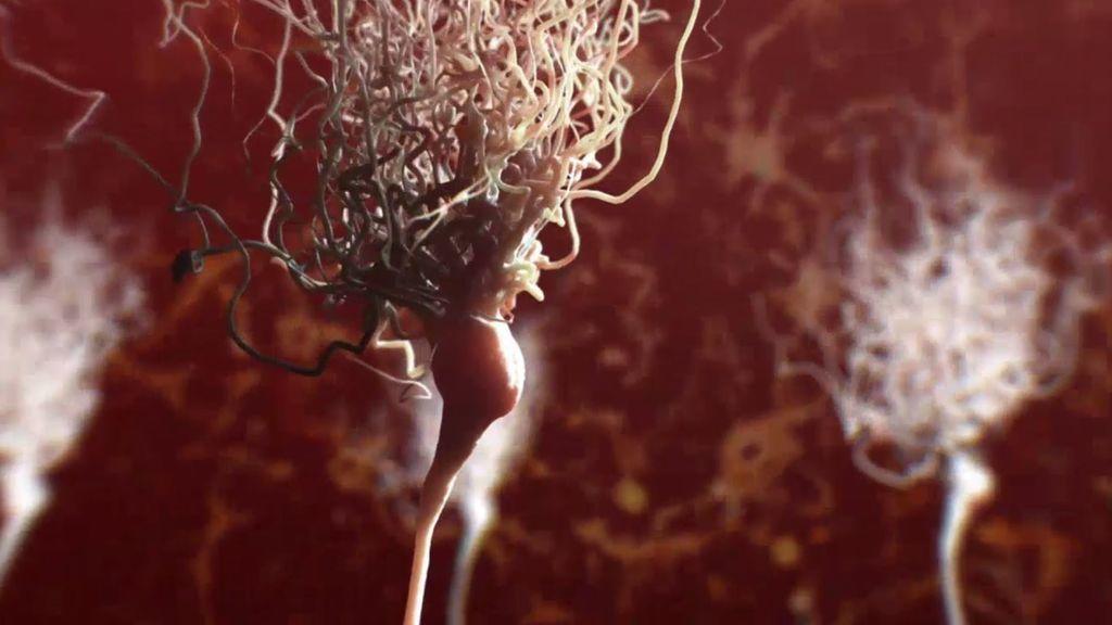 Resurgimiento de neuronas