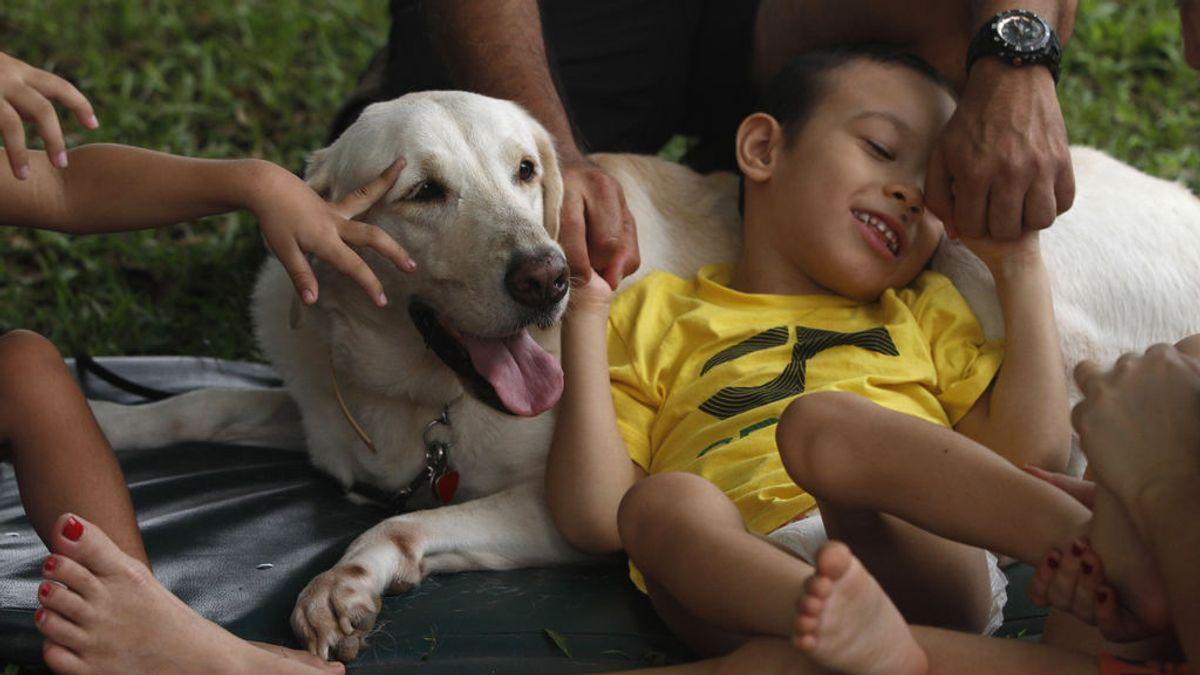Mascotas y salud