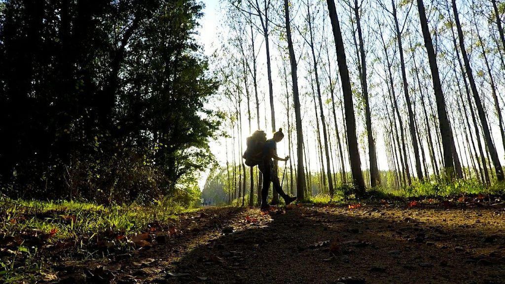 Raquel en un bosque