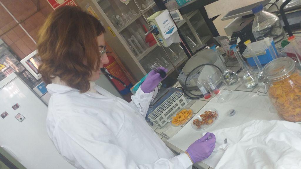 La piel de tomate: la solución a los envases de plástico, según investigadores de la Universidad de Málaga