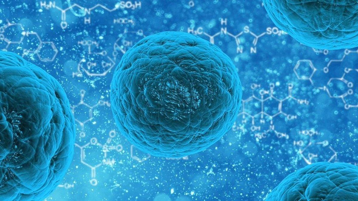 Se ha demostrado que una técnica de ultrasonido elimina el cáncer de próstata