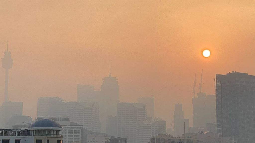 Cielo naranja y playas negras: el humo de los incendios hace estragos