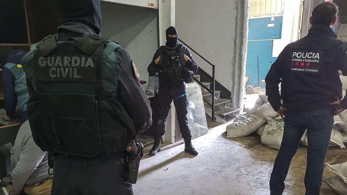 Golpe al narcotráfico: intervienen más de 20 kilos de cocaína pura camuflada entre abono en Tarragona