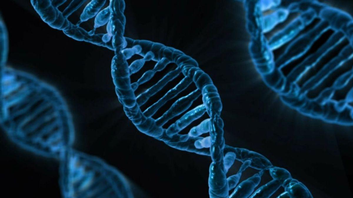 Un hombre nuevo: se somete a un trasplante de médula ósea y su ADN queda reemplazado por el de su donante