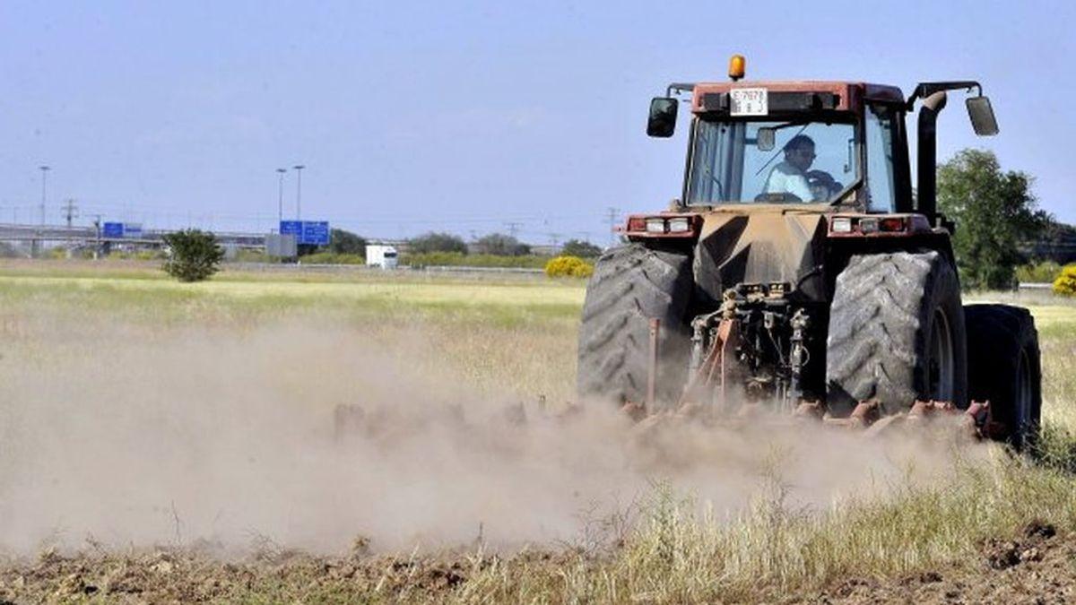 EEUU podría elevar al 100% los aranceles a los productos agrícolas españoles